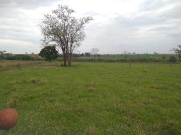 Comprar Rural / Sítio em Coroados apenas R$ 930.000,00 - Foto 38