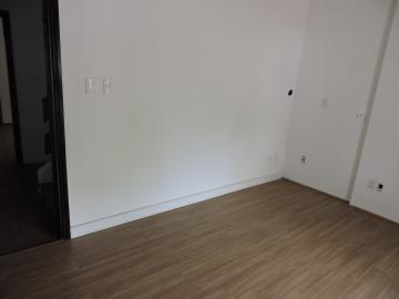 Aracatuba Centro casa Locacao R$ 4.000,00 3 Dormitorios 3 Vagas Area do terreno 227.00m2