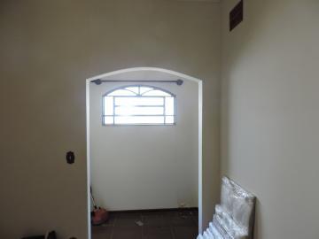 Alugar Casa / Residencial em Araçatuba apenas R$ 4.000,00 - Foto 2