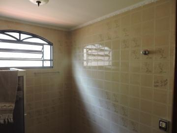 Alugar Casa / Residencial em Araçatuba apenas R$ 4.000,00 - Foto 8