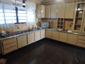 Alugar Casa / Residencial em Araçatuba apenas R$ 4.000,00 - Foto 5