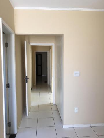 Comprar Casa / Sobrado em Araçatuba apenas R$ 380.000,00 - Foto 11