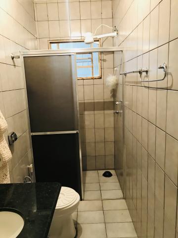 Alugar Casa / Residencial em Araçatuba R$ 750,00 - Foto 2