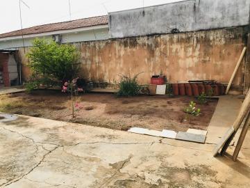 Alugar Casa / Residencial em Araçatuba R$ 750,00 - Foto 7