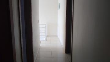 Comprar Casa / Sobrado em Araçatuba apenas R$ 530.000,00 - Foto 5