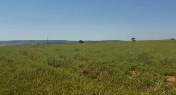Comprar Rural / Fazenda em Cassilândia - Foto 10