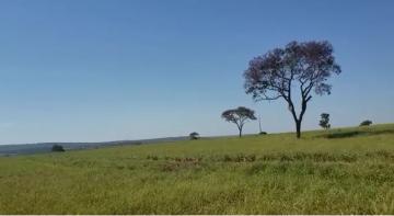 Comprar Rural / Fazenda em Cassilândia - Foto 11