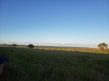 Comprar Rural / Fazenda em Cassilândia - Foto 1