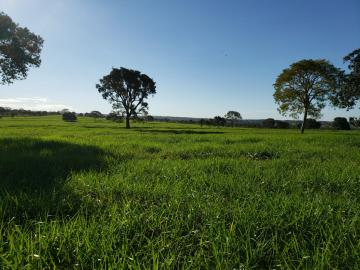 Comprar Rural / Fazenda em Cassilândia - Foto 5