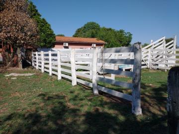 Comprar Rural / Rancho em Santo Antônio do Aracanguá apenas R$ 1.470.000,00 - Foto 2