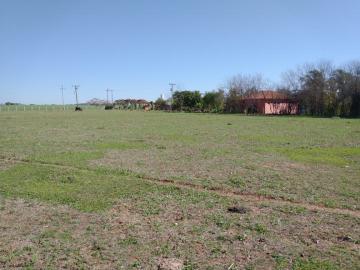 Comprar Rural / Rancho em Santo Antônio do Aracanguá apenas R$ 1.470.000,00 - Foto 4
