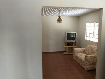 Comprar Rural / Rancho em Santo Antônio do Aracanguá apenas R$ 1.470.000,00 - Foto 24