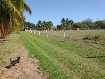 Comprar Rural / Rancho em Santo Antônio do Aracanguá apenas R$ 1.470.000,00 - Foto 36