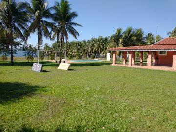 Comprar Rural / Rancho em Santo Antônio do Aracanguá apenas R$ 1.470.000,00 - Foto 37