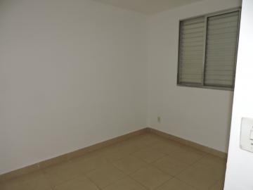 Alugar Apartamento / Padrão em Araçatuba R$ 800,00 - Foto 7