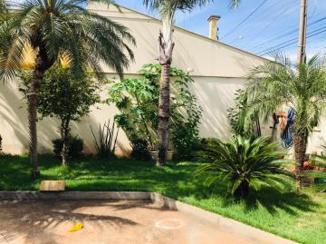 Comprar Comercial / Casa em Araçatuba apenas R$ 230.000,00 - Foto 2