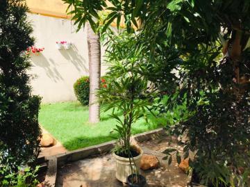 Comprar Comercial / Casa em Araçatuba apenas R$ 230.000,00 - Foto 4