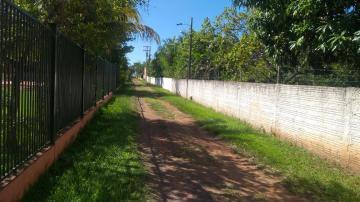 Comprar Rural / Rancho em Santo Antônio do Aracanguá apenas R$ 350.000,00 - Foto 1