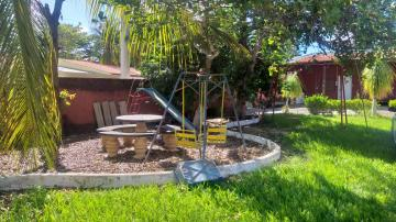Comprar Rural / Rancho em Santo Antônio do Aracanguá apenas R$ 350.000,00 - Foto 13