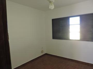 Alugar Casa / Residencial em Araçatuba apenas R$ 800,00 - Foto 4