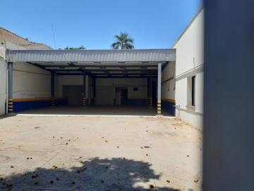 Aracatuba Vila Mendonca Estabelecimento Venda R$1.650.000,00  5 Vagas Area construida 466.57m2