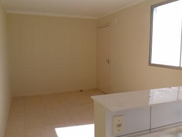 Alugar Apartamento / Padrão em Araçatuba R$ 750,00 - Foto 1