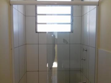 Alugar Apartamento / Padrão em Araçatuba R$ 750,00 - Foto 4