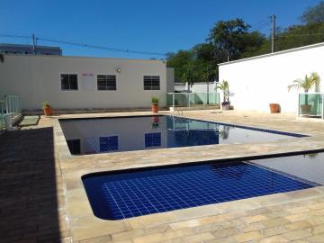 Alugar Apartamento / Padrão em Araçatuba R$ 750,00 - Foto 10