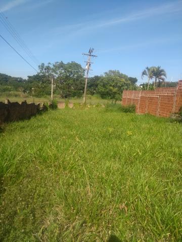 Comprar Terreno / Padrão em Araçatuba R$ 140.000,00 - Foto 3