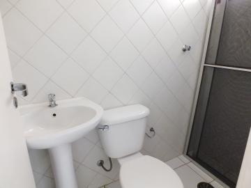 Alugar Apartamento / Padrão em Araçatuba R$ 1.200,00 - Foto 23